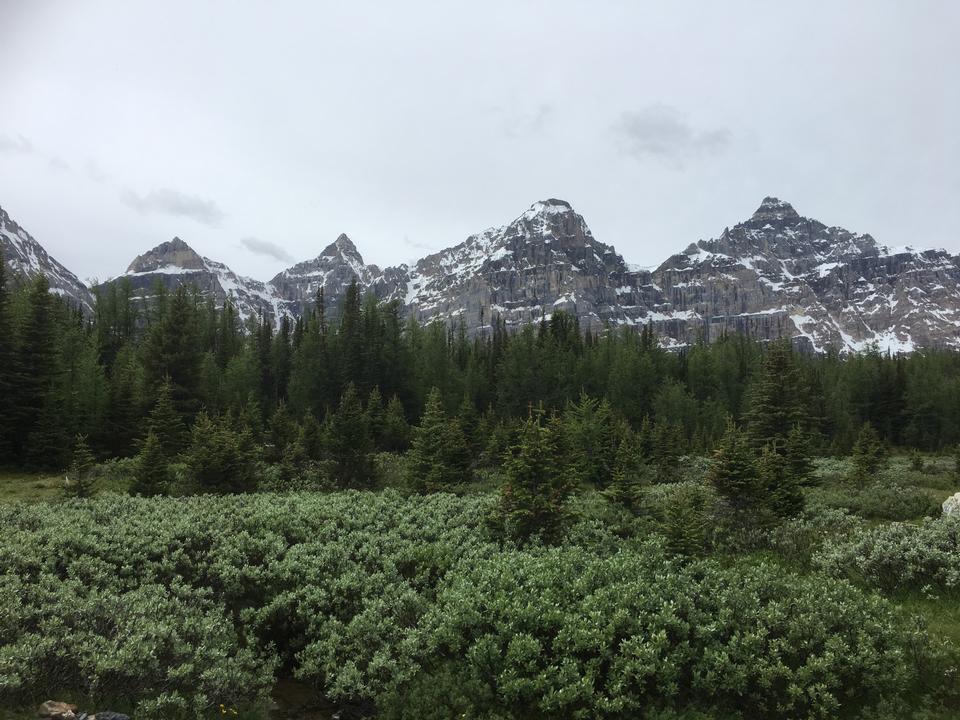 Larch Valley Trail - Die zehn Gipfel, Moraine Lake, Banff