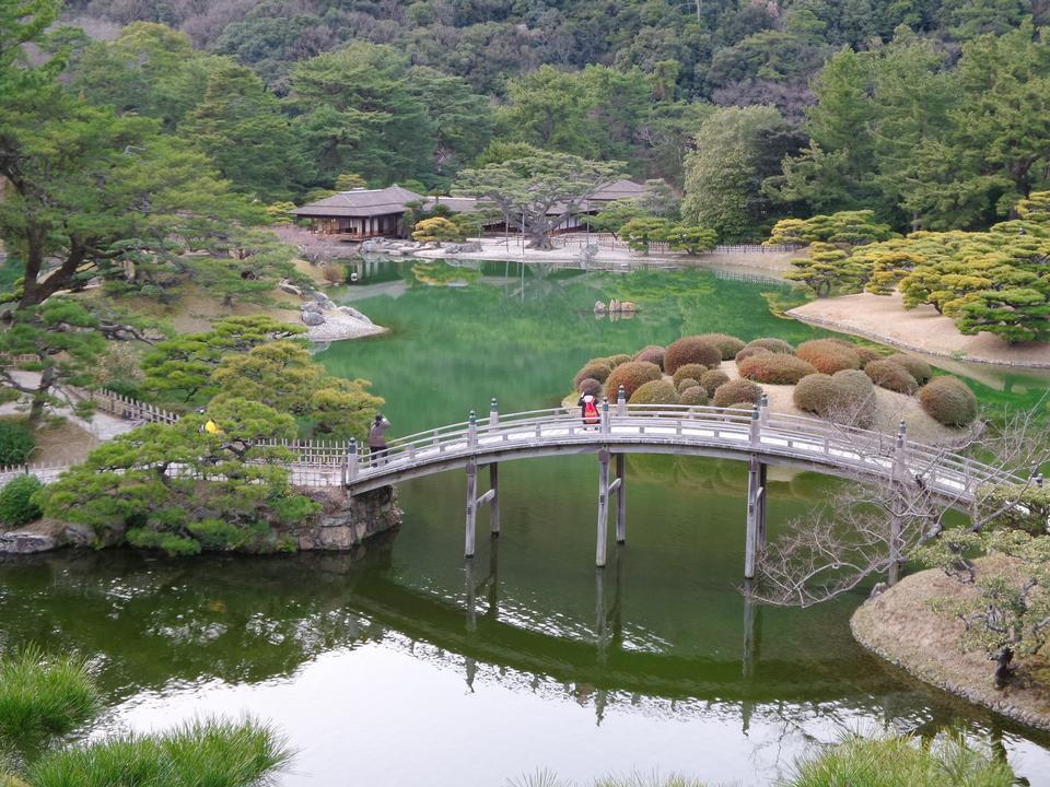 日本高鬆的日本花園