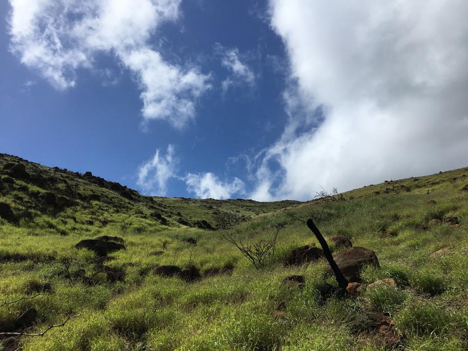 Lahaina Pali Trail Maui, Hawaii