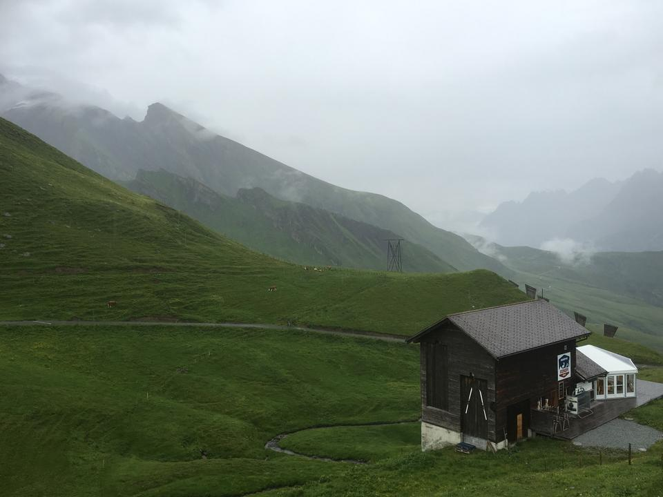Swiss beauty, Jungfrau