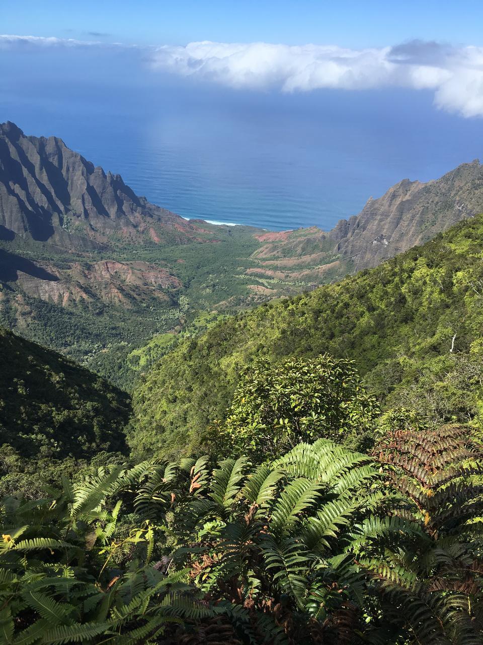 Amazing Waimea Canyon in Kauai, Hawaii Islands