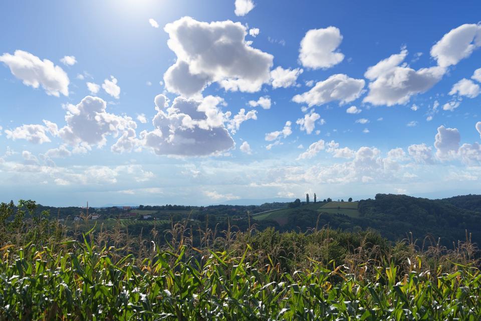 在蓝色的天空与云彩下的绿色草地