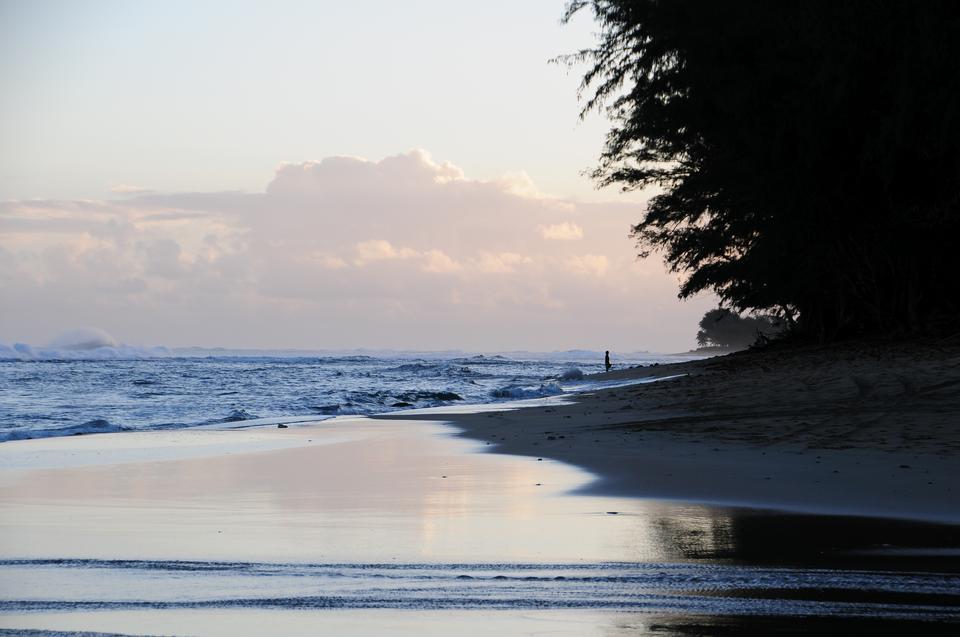 在夏威夷的卡拉劳海滩