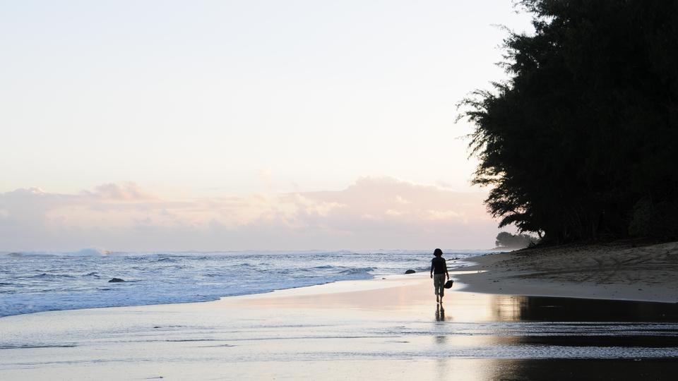 Silueta, de, um, pessoa caminhando, ligado, a, praia, ligado, kauai