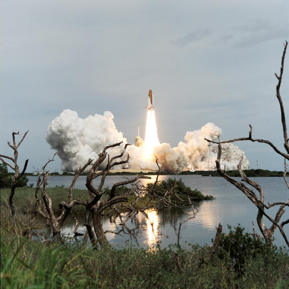 Marsh driftwood and Florida shrubbery frame the liftoff