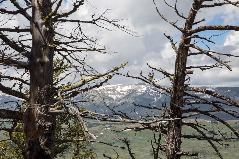 Bunsen peak hiking trail with beautiful landscape views