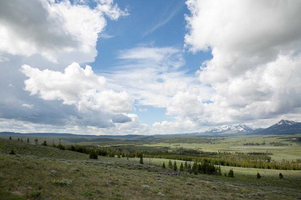本生峰徑。黃石國家公園