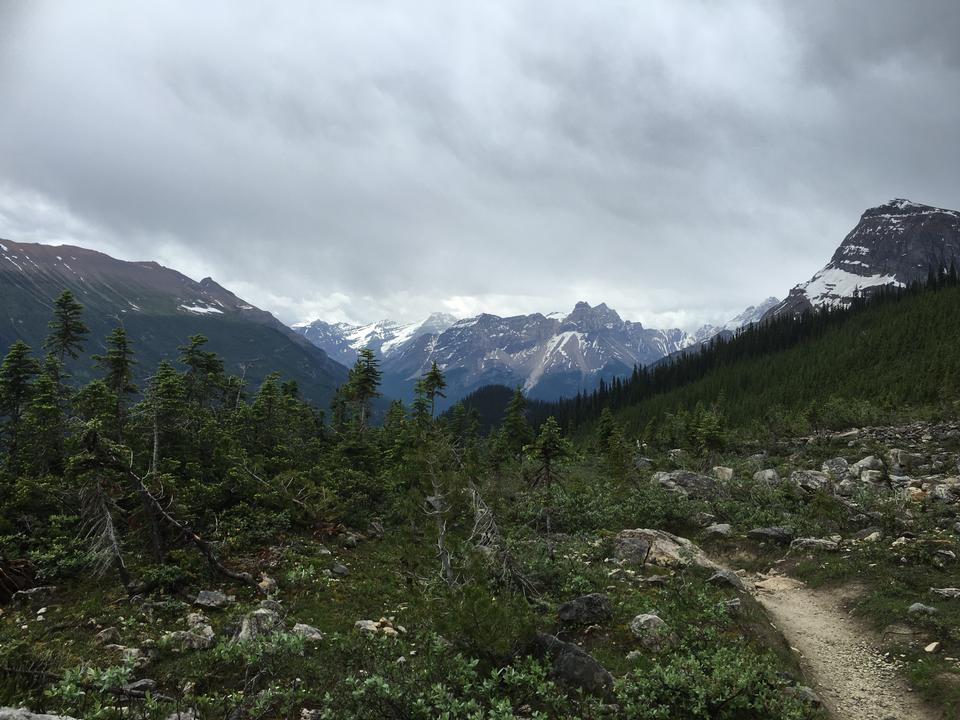 The Iceline Trail in Yoho National Park, Canadian Rockies