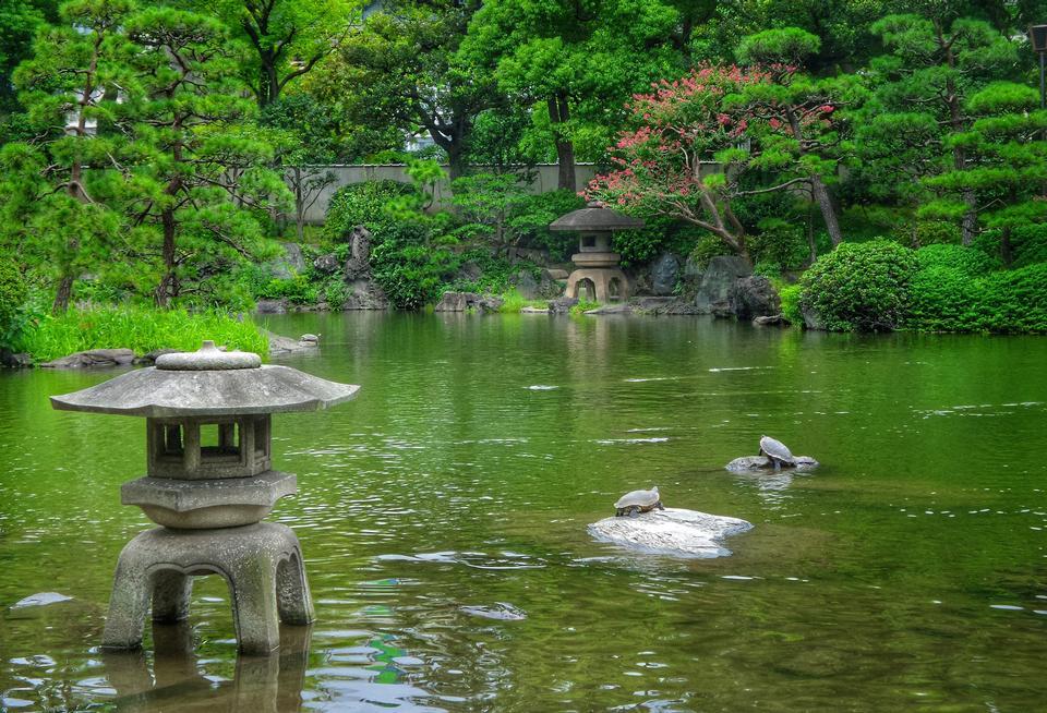 美丽的日本花园