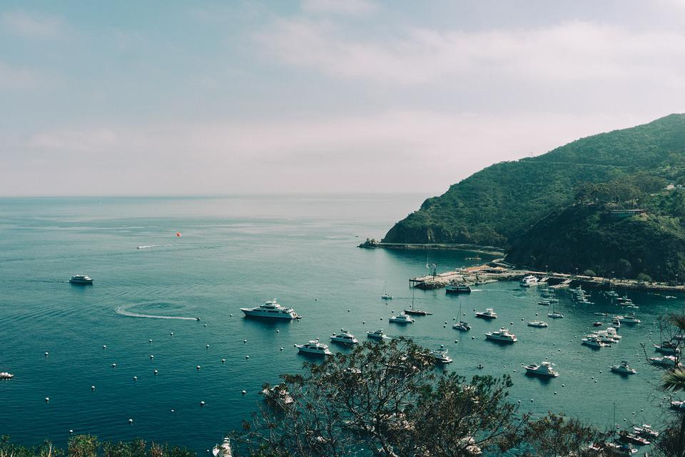 カタリナ島の港でのボートの景色