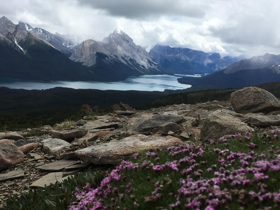 Bald Hills y Maligne Lake, Parque Nacional Jasper, Canadá