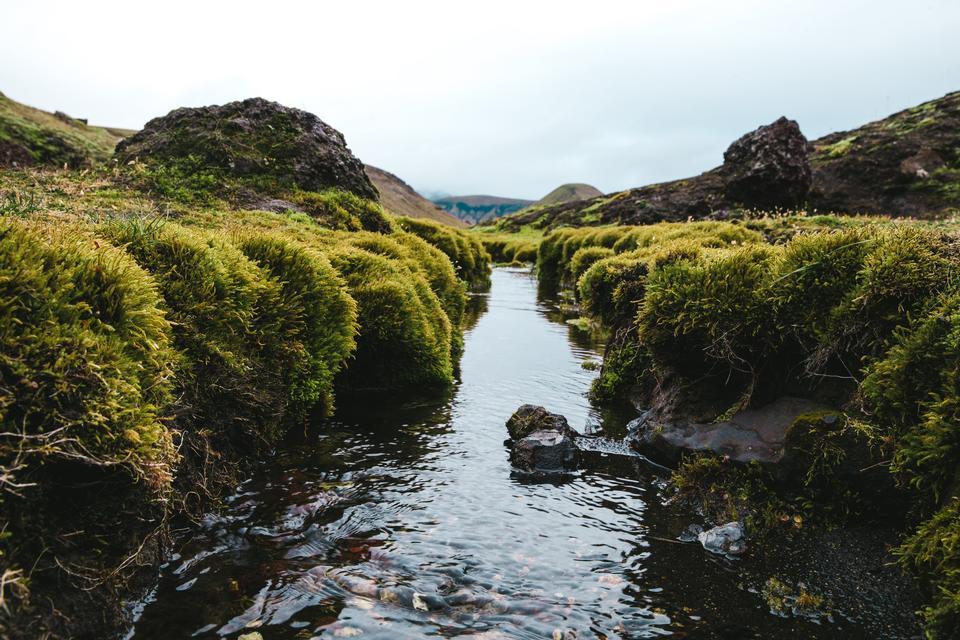 有清水的小狹窄的小河