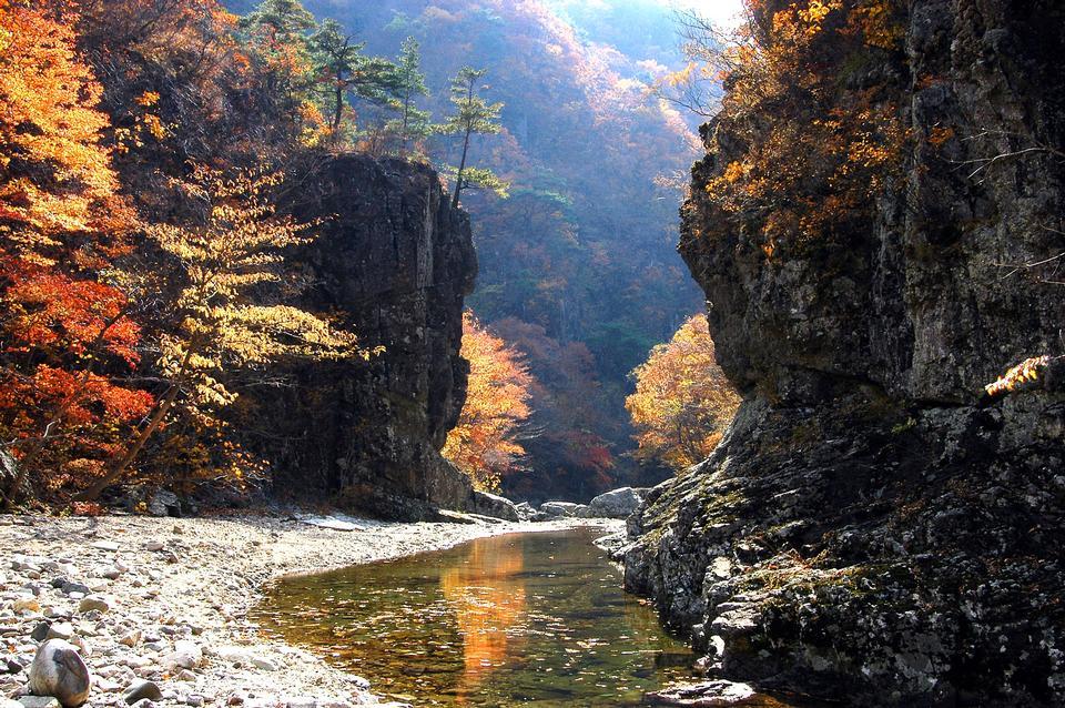 韓国の山の秋の谷の風景