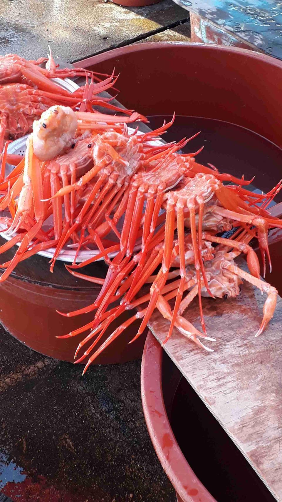 Fresh crap sale seafood market