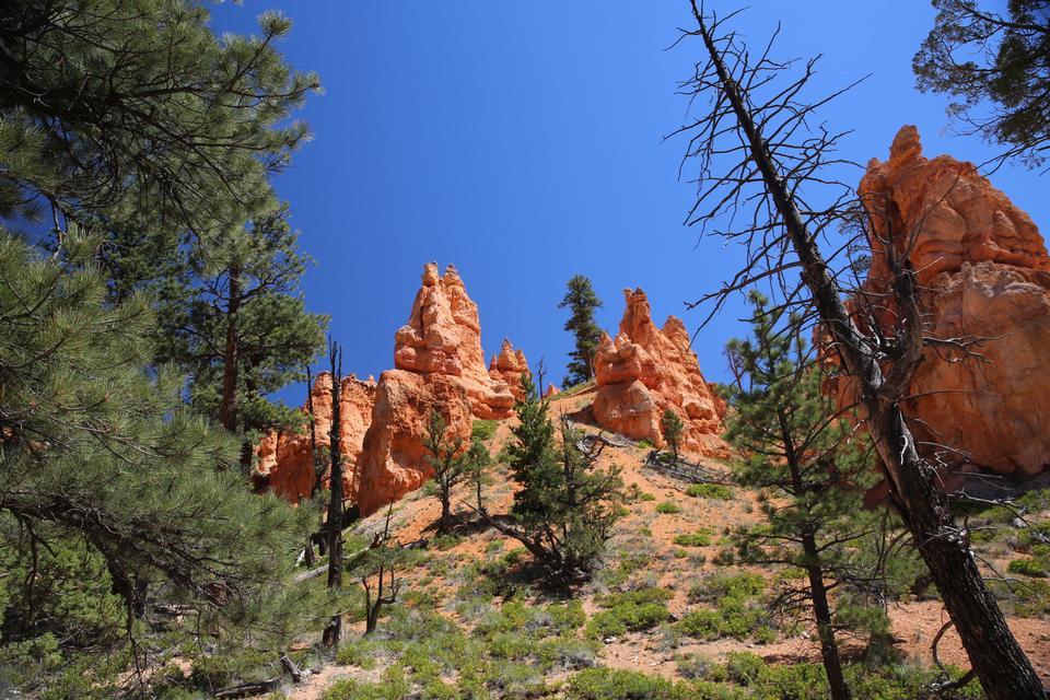 Bryce Canyon National Park a Navajo Loop Trail, Utah
