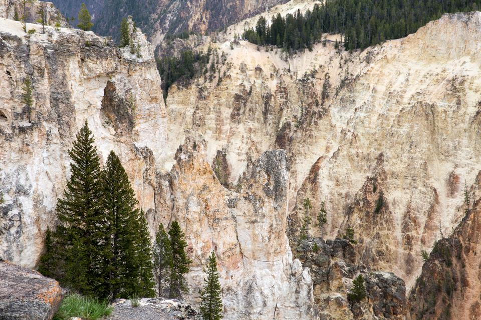 South Rim of the Grand Canyon of the Yellowstone