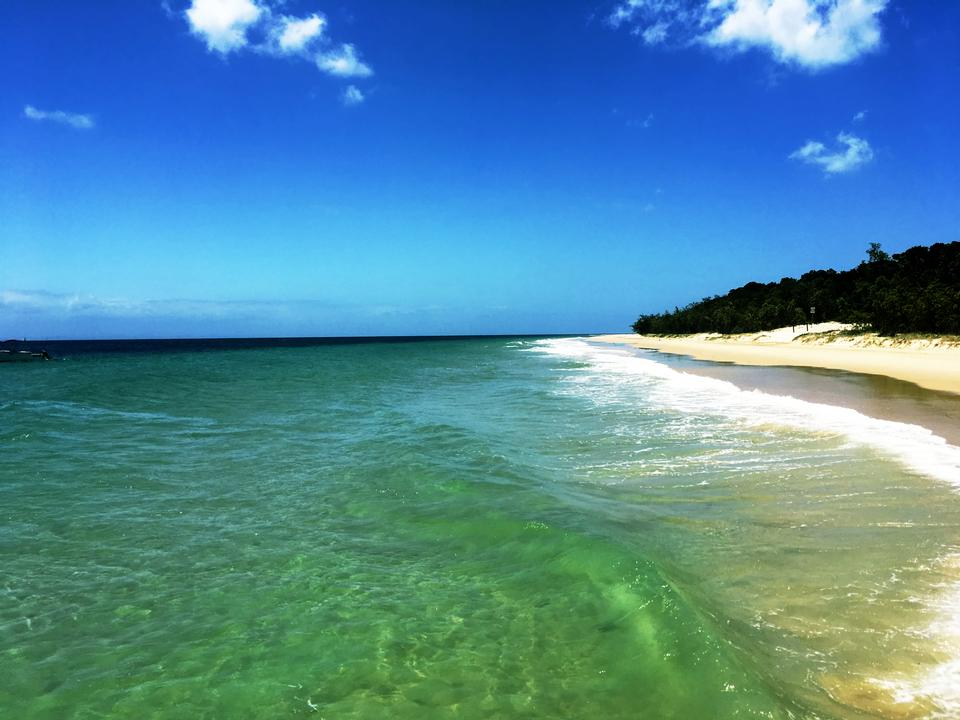 Moreton Bay Island Beauty, QLD Australia