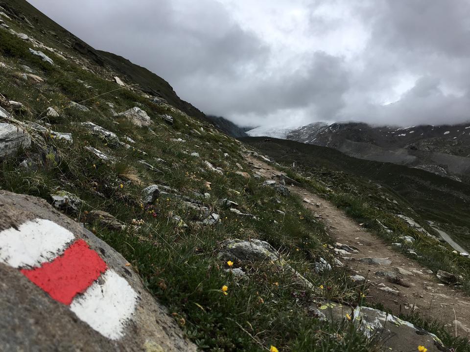View of the Mont Blanc massif and Chamonix
