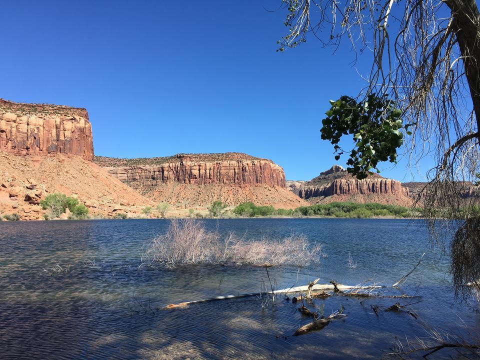 與反射的大教堂岩石,Sedona,亞利桑那,美國