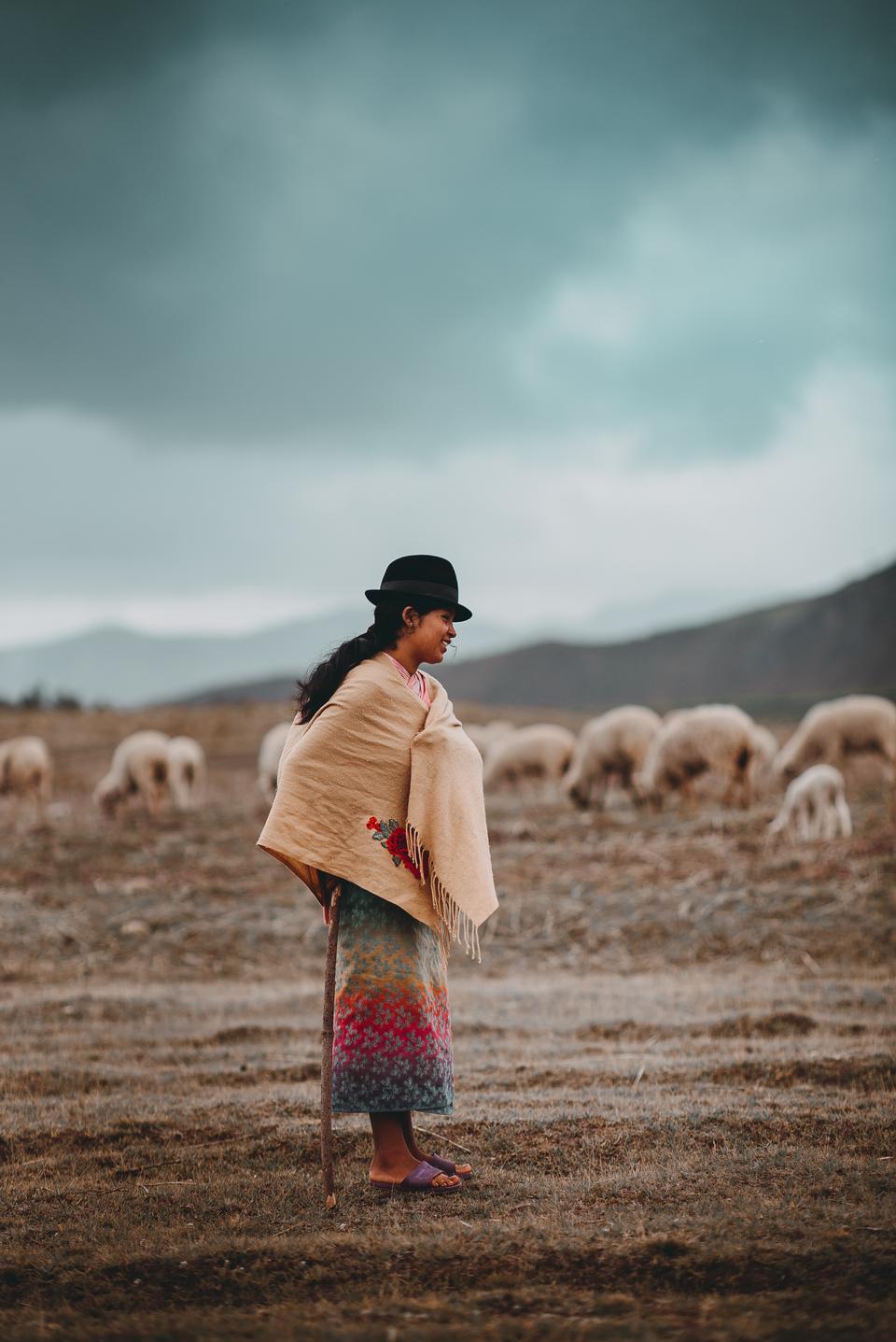 계곡에서 그녀의 알파카와 함께 걷고있는 젊은 아가씨