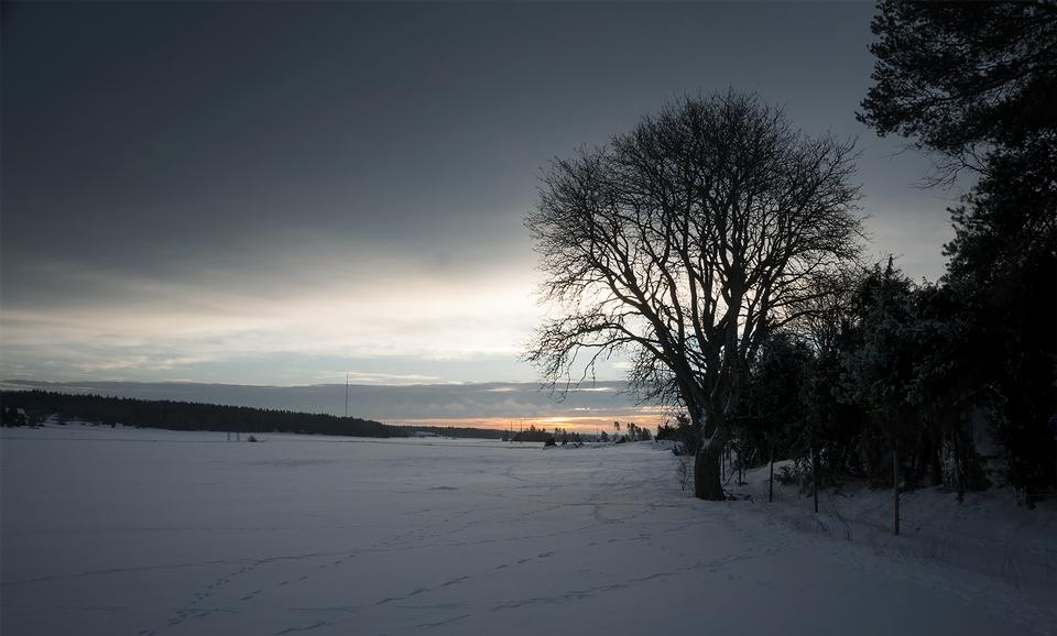 Winter snowy rural landscape at sunrise