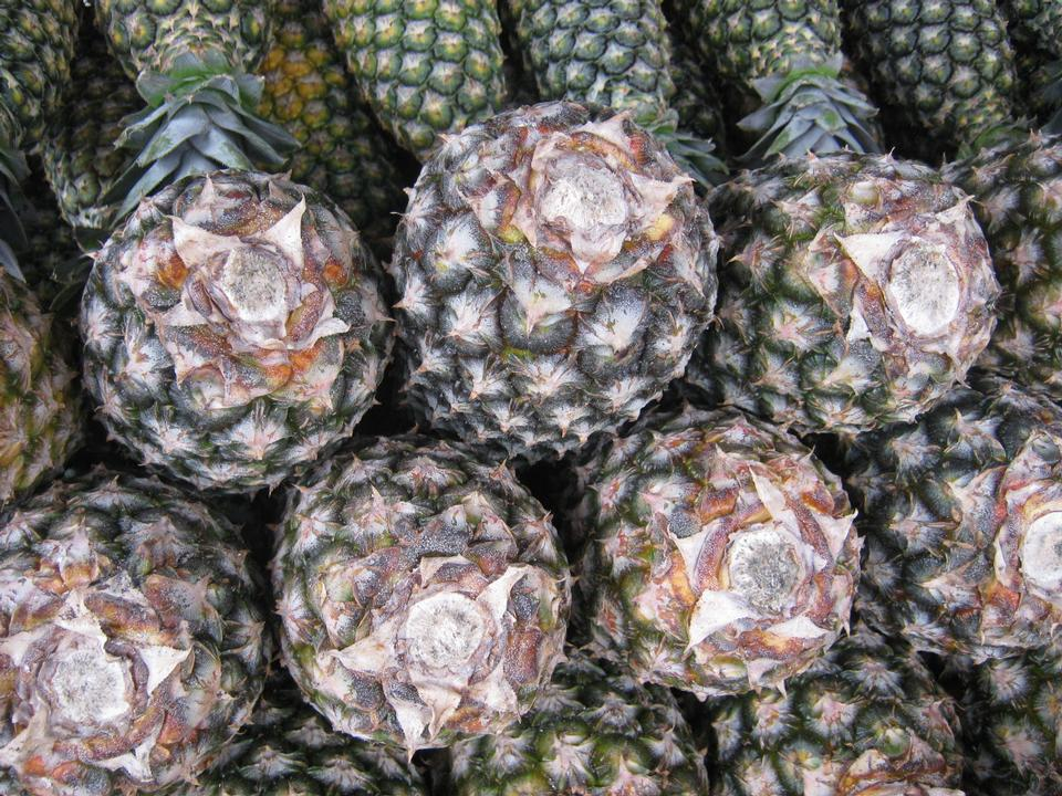 Stacks of fresh whole pineapple fruits