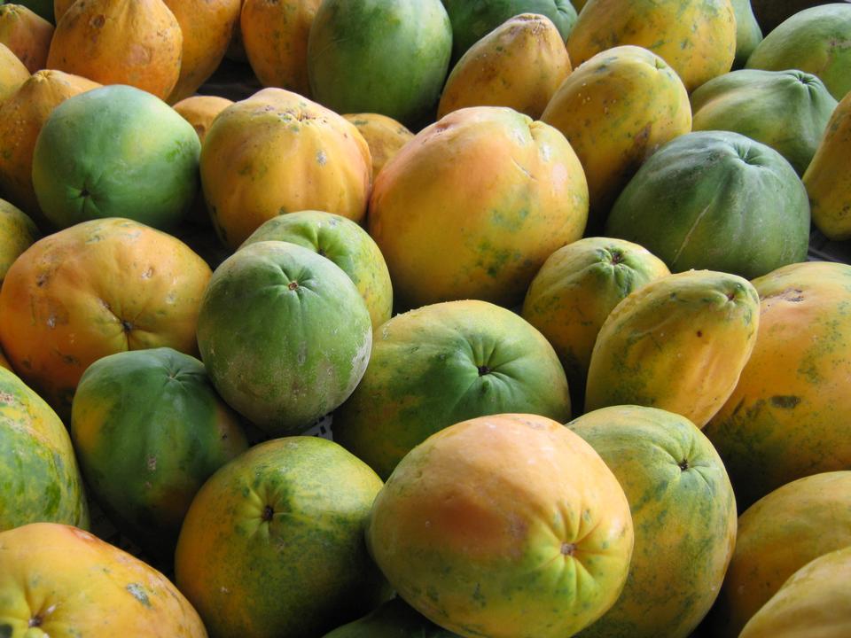 在农夫的市场上的新鲜有机成熟木瓜