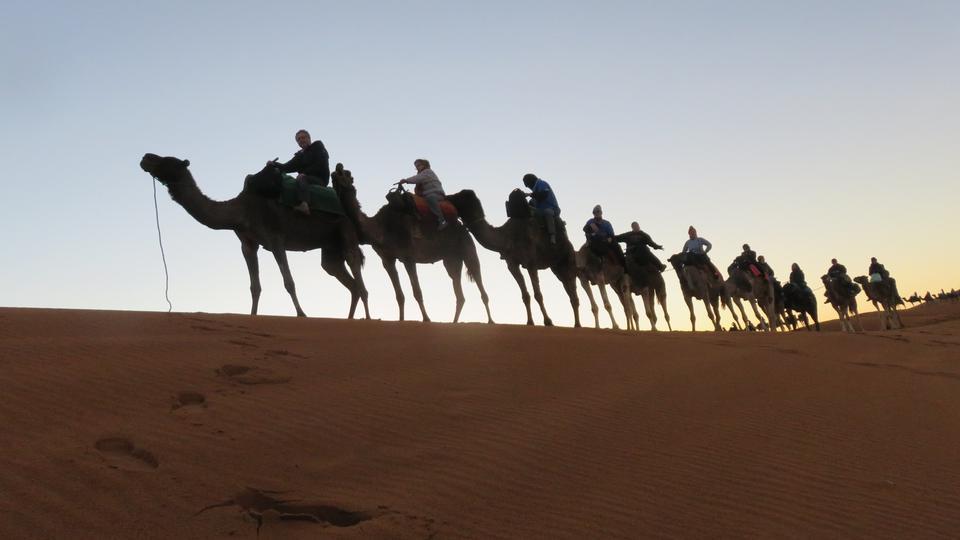 日の出砂漠の砂丘にラクダのキャラバン