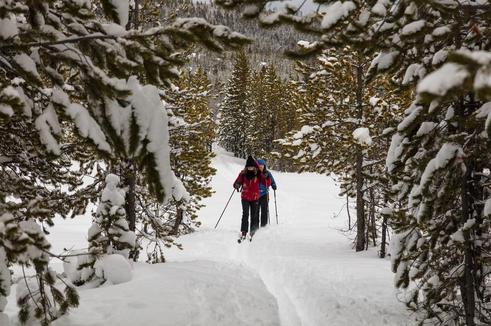 escursionisti sul sentiero nel Parco Nazionale di Yellowstone
