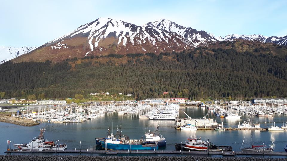 Boat Marina in Seward, Alaska, United States