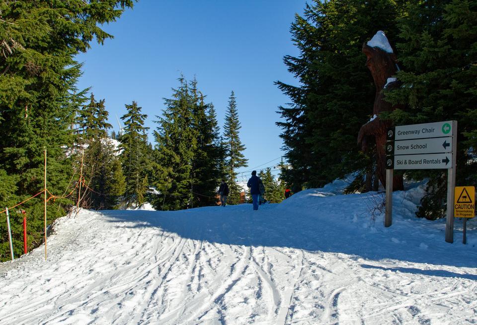 在松鸡山的冬天,温哥华,BC