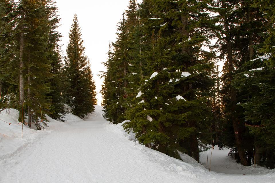 グラウス山、バンクーバー、BCの冬