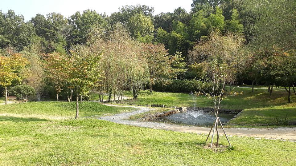 한국 담양 죽녹원