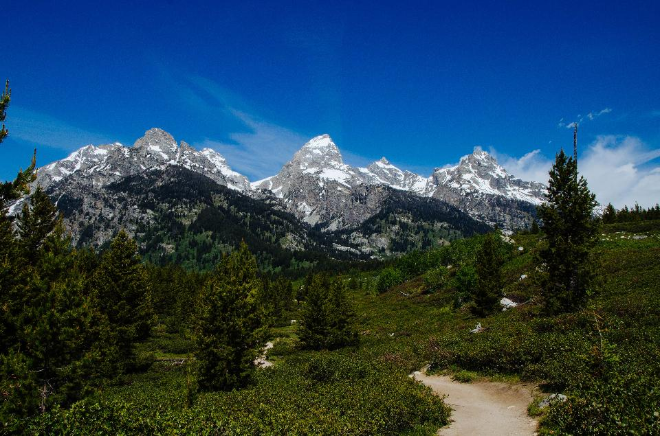 North Fork Cascade Canyon in Grand Teton National Park