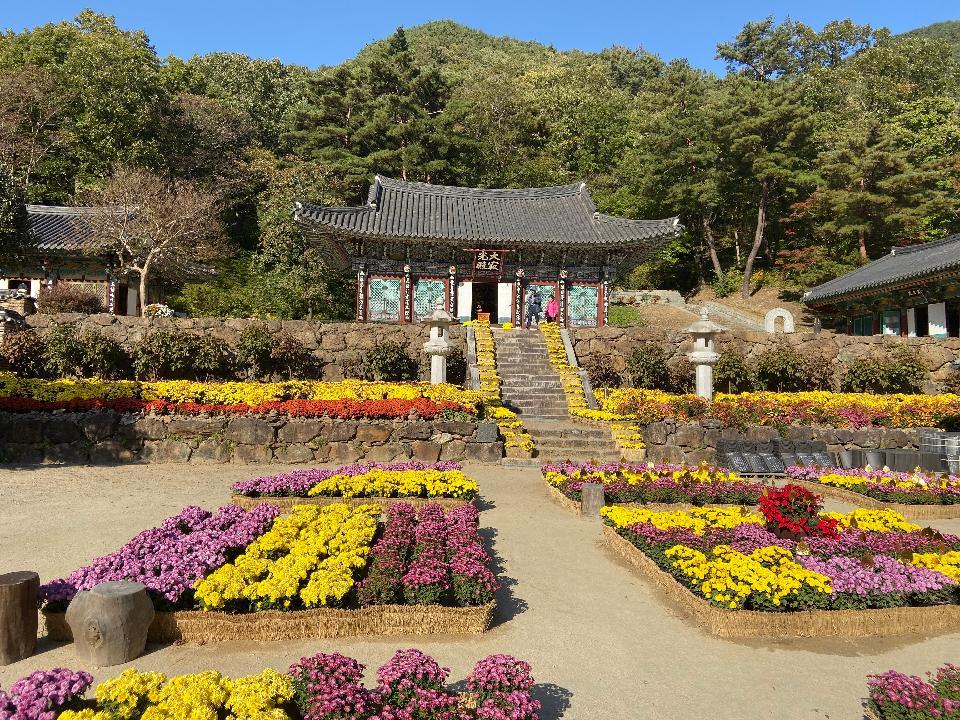 Yeongoksa Temple in Gurye South Korea