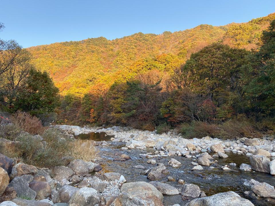 Jirisan Magnificent Fall Colors