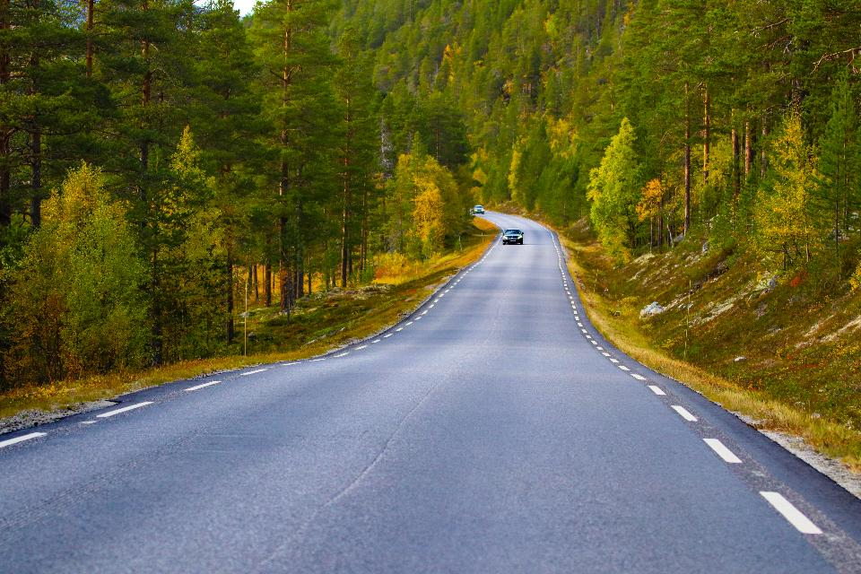 Norwegian country road in the summer among the mountains