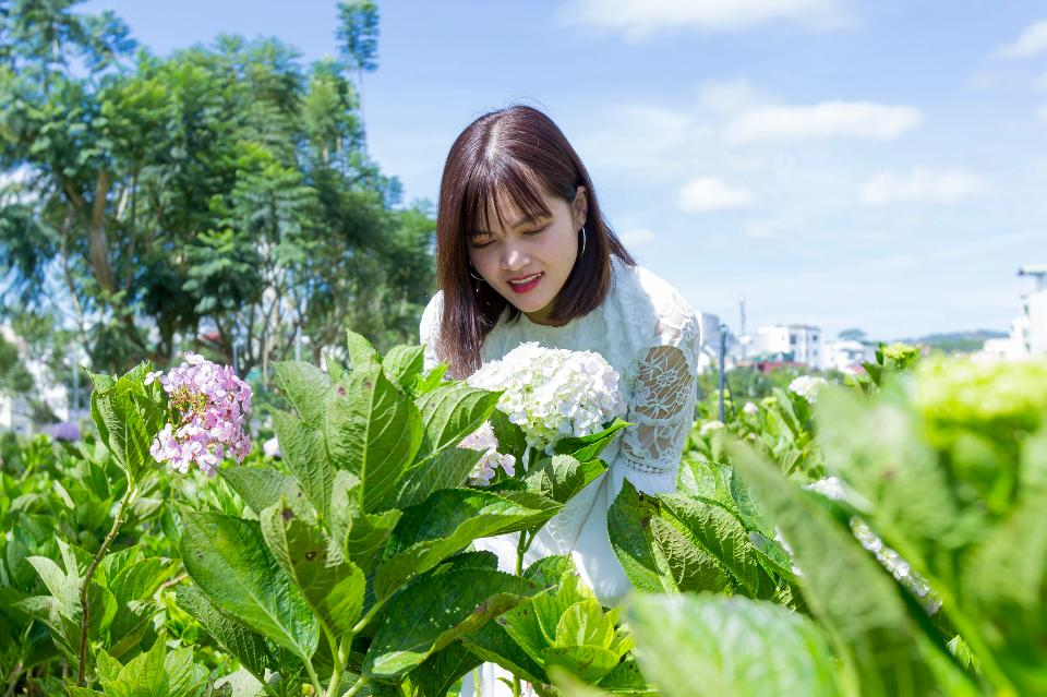 Beautiful Asian Girl smell of the flower