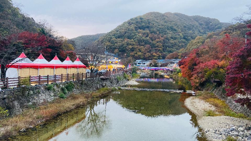 Fall Foliage Naejangsan National Park