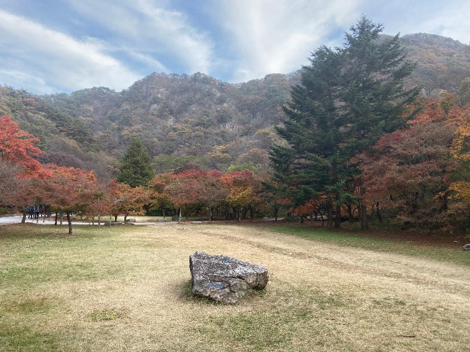 Fall Foliage Naejangsan National Park