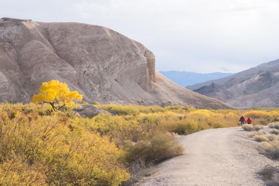 China Ranch Date Farm Trail