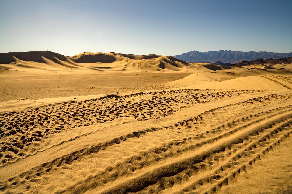 The Dumont Dunes Off -Highway Vehicle Area
