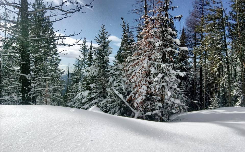 Snowshoeing along the Kettle Crest Trail