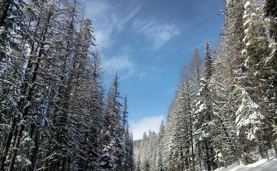 Raquetas de nieve a lo largo del sendero Kettle Crest