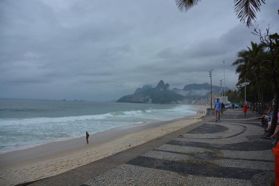 Palms and Two Brothers Mountain on Ipanema beach