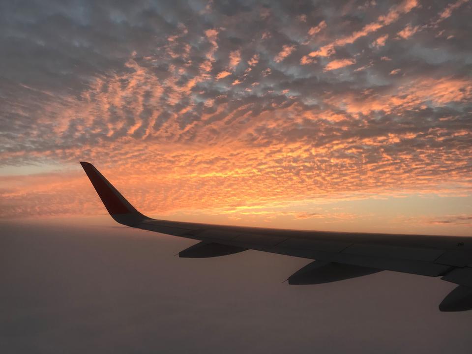 一架飞机的翼在日落的