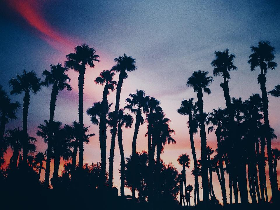 Sunrise Borrego Springs, California