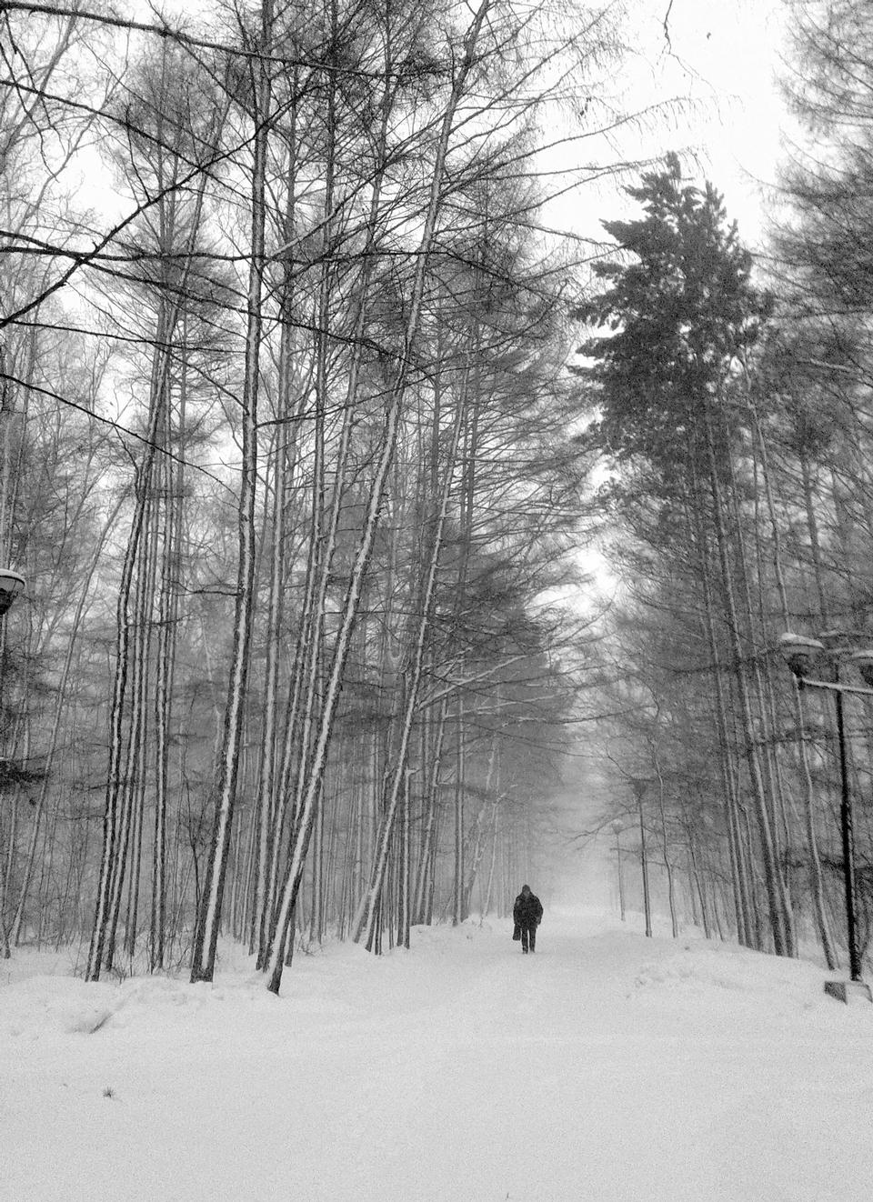 Bosque de fantasía en invierno con el hombre.