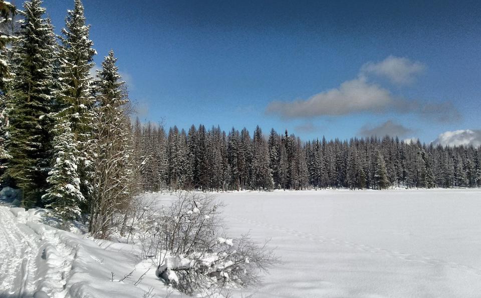 El sendero en el lago Frater en el Bosque Nacional Colville