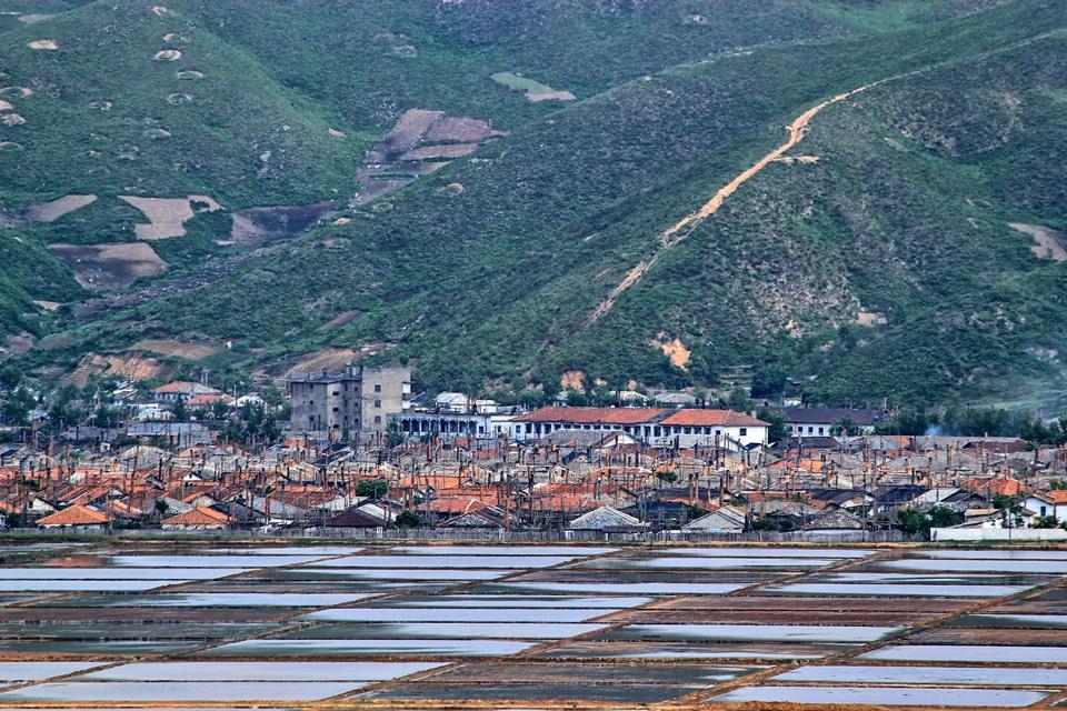 rizières en Corée du Nord